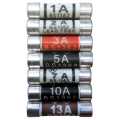 10 Pack 10a Fuses